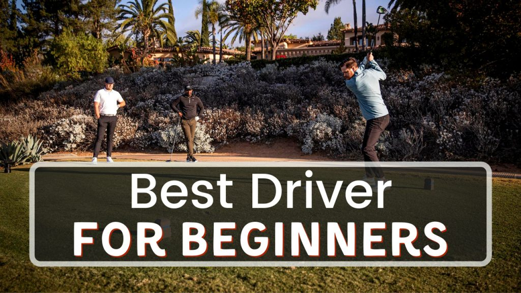 Best Driver For Beginners